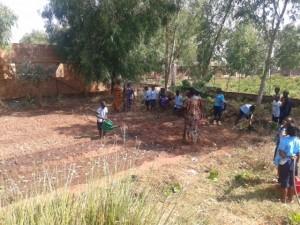 Agricultura na Cooperativa 2